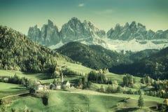 Weinleselandschaft mit Bergen Stockbilder