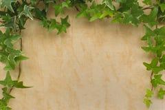 Weinlesenatürliches Leinengewebe mit Rahmen von grünen Blättern Backgro Stockfotografie