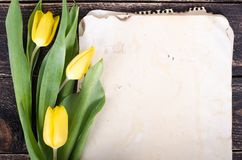Weinlesepapier, Bleistifte und gelbe Tulpen auf hölzernem Hintergrund Freier Platz für Ihren Text stockbild