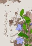 Weinleseplakat mit Blumen des Singrüns auf braunem Hintergrund Stockbilder
