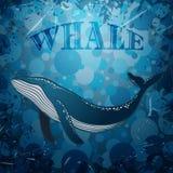 Weinleseplakat mit Wal auf Marineschmutzhintergrund Lizenzfreies Stockbild