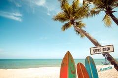 Weinlesesurfbrett mit Palme auf tropischem Strand im Sommer Stockfotografie