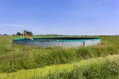 WeinleseSwimmingpool in der Weide stockfoto