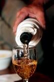Weinprüfung in Ungarn Lizenzfreies Stockfoto