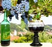 Weinprobe lizenzfreies stockbild