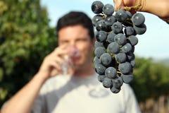 Weinprobieren Lizenzfreie Stockfotografie