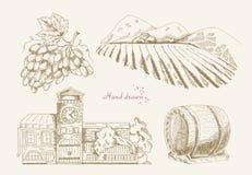 Weinproduktion Auch im corel abgehobenen Betrag Stockbilder