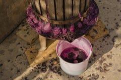 Weinproduktion Technologie der Weinproduktion stockbilder