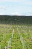 Weinreben, die für das Wachsen in Australien mit Landwirtschaftstraktor, Wolken, Schatten und Himmel im Hintergrund vorbereitet w Stockbilder