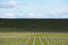 Weinreben, die für das Wachsen in Australien mit Landwirtschaftstraktor, Wolken, Schatten und Himmel im Hintergrund vorbereitet w Lizenzfreie Stockfotografie