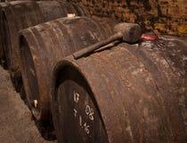 Weinstöcke Stockfoto