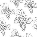 Weintraube auf einem gr?nen Hintergrund Sch?nes Muster Satz Vektorskizzen Auch im corel abgehobenen Betrag vektor abbildung
