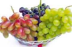 Weintrauben auf einem weißen Hintergrund Lizenzfreies Stockbild