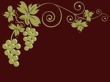 Weintrauben und Blätter Stockbild