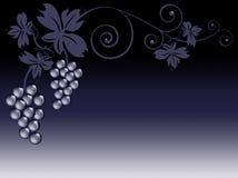 Weintrauben und Blätter Stockfotos