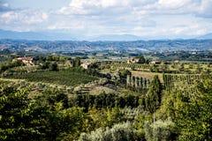 Weinyardüberblick Italien Toskana stockfotografie