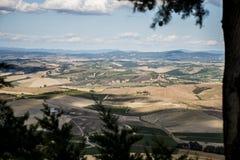 Weinyardüberblick Italien Toskana lizenzfreies stockfoto