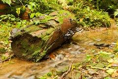 Weir do detalhe Fotografia de Stock