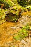 Weir do detalhe Fotografia de Stock Royalty Free