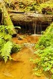 Weir do detalhe Foto de Stock Royalty Free