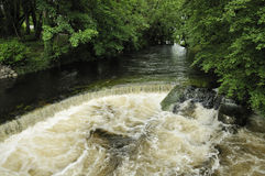 Weir on River Fergus Royalty Free Stock Photo