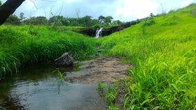 Weise vom Wasserfall Lizenzfreie Stockbilder
