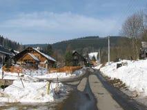 Weise in Winter OstruÅ-¾ nà ¡ lizenzfreie stockfotografie
