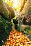 Weisenstraße zwischen dem Felsen Stockfotos