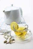 Weiser Tee Lizenzfreie Stockfotos