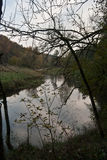 Weisse Elster flod nära Plauen i Sachsen Fotografering för Bildbyråer