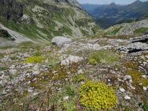 Weissee, Oostenrijk Stock Afbeeldingen