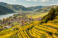 Weissenkirchen Wachau Austria in autumn colored leaves and vineyards royalty free stock photo