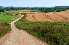 Weiter Weg auf dem gepflogenen Gebiet, Ackerland, Schotterweg mitten in dem Feld Lizenzfreies Stockbild