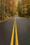 Weiter Weg in Autumn Vertical Shot Stockfotografie