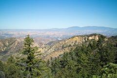 Weitwinkelansicht-übersehenbäume und Tal Stockfoto