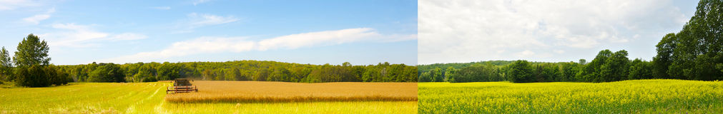 Weitwinkelfeld zwei Jahreszeiten. stockfoto