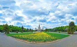 Weitwinkelpanoramablick von den Fr?hlingsblumen, die im Campus der ber?hmten russischen Universit?t in Moskau unter drastischem H lizenzfreies stockfoto