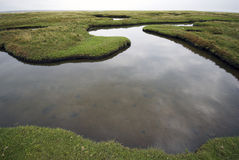 Weitwinkelwasser Stockfotografie