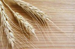 Weizenährchen Stockbilder