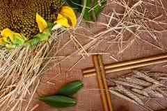 Weizenähren, Sonnenblume Stockbild