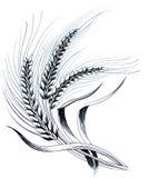 Weizen-Anlage lizenzfreie abbildung