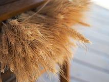 Weizen-Bündel Stockfotografie