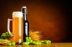 Weizen-Bier-und Brauenbestandteile mit Kopien-Raum lizenzfreie stockfotos