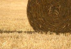 Weizen-Ernte Lizenzfreie Stockfotografie