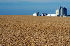 Weizen-Feld u. Getreidespeicher Lizenzfreies Stockbild
