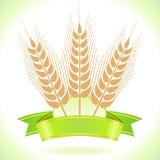Weizen-Korn-Kennsatz lizenzfreie abbildung