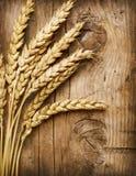 Weizen-Ohren stockfotografie