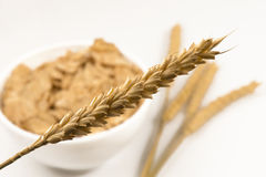 Weizen und Schüssel Zuckermaisflocken lizenzfreies stockfoto