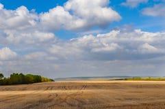 Weizenfeld in den Vorbergen des Erholungsortes Borovoe in Kasachstan Lizenzfreies Stockbild