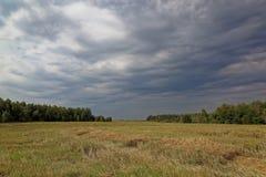 Weizenfeld nach dem Ernten und stürmischem Himmel Stockfotos